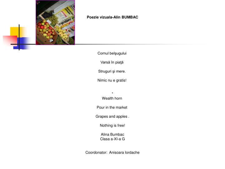 Poezie vizuala-Alin BUMBAC