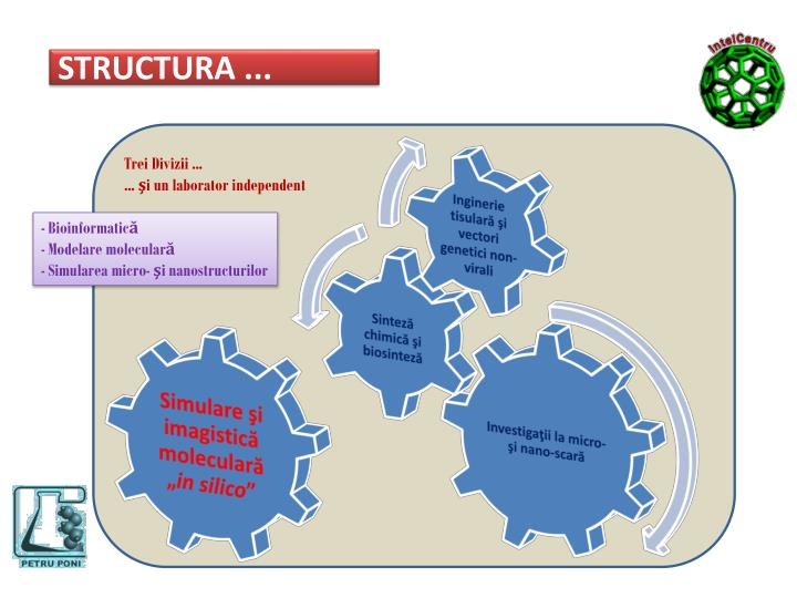 STRUCTURA ...