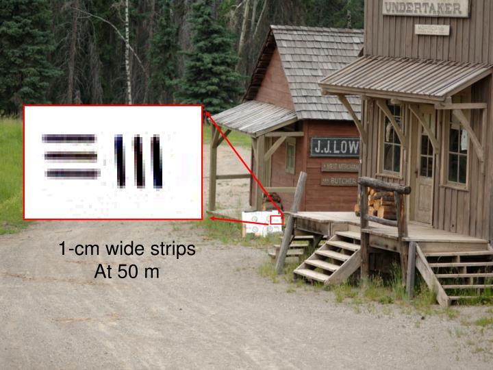 1-cm wide strips