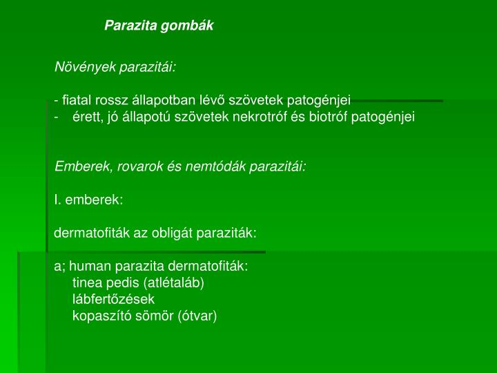 Parazita gombák
