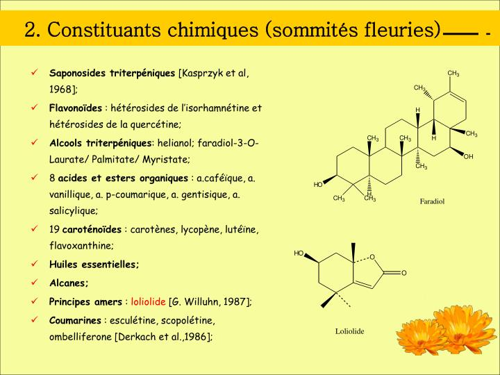 2. Constituants chimiques (sommités fleuries)