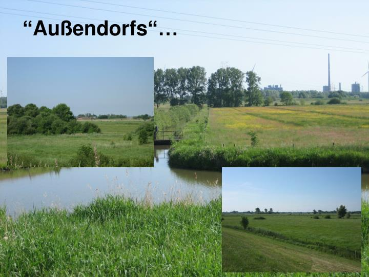 """""""Außendorfs""""…"""