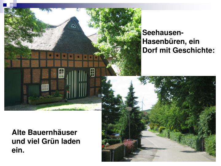 Seehausen-