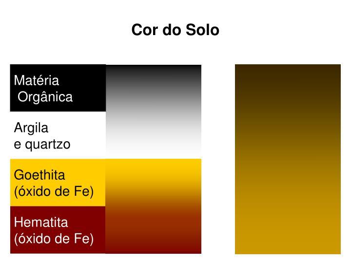 Cor do Solo