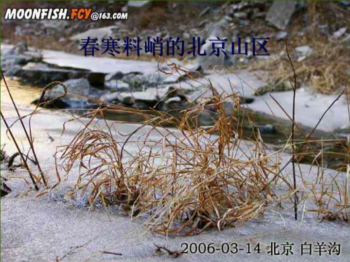 春寒料峭的北京山区