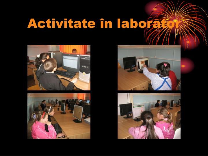 Activitate în laborator