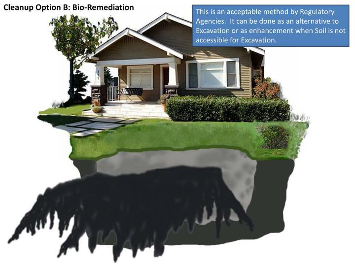 Cleanup Option B: Bio-Remediation