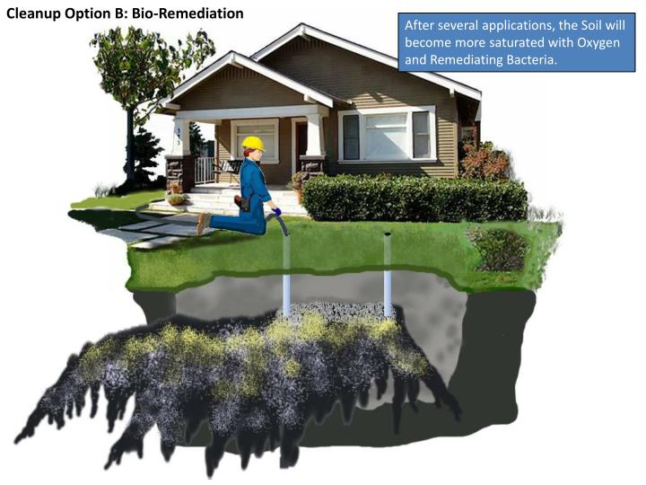 Cleanup Option B: Bio-Remediation