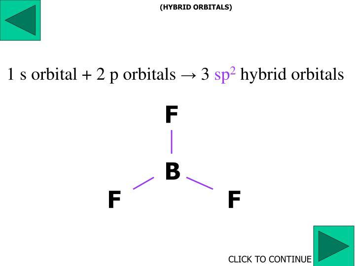 (HYBRID ORBITALS)