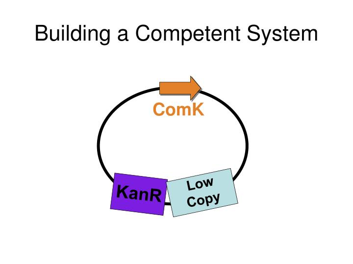 Building a Competent System