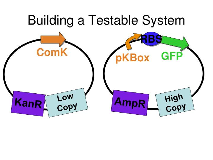 Building a Testable System