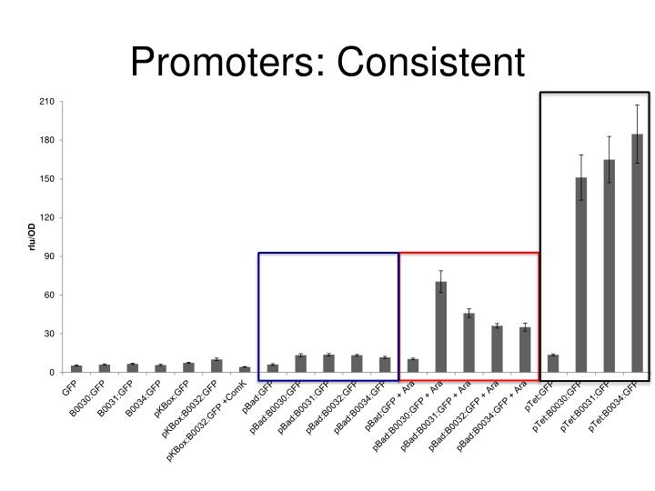 Promoters: Consistent