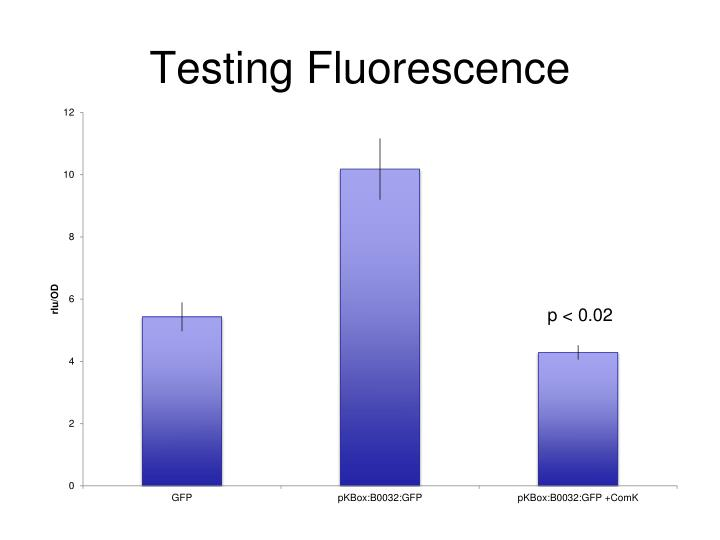 Testing Fluorescence