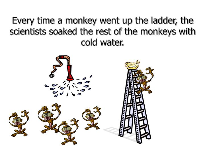 Every time a monkey went up the ladder, the scientists soaked the rest of the monkeys with cold wate...