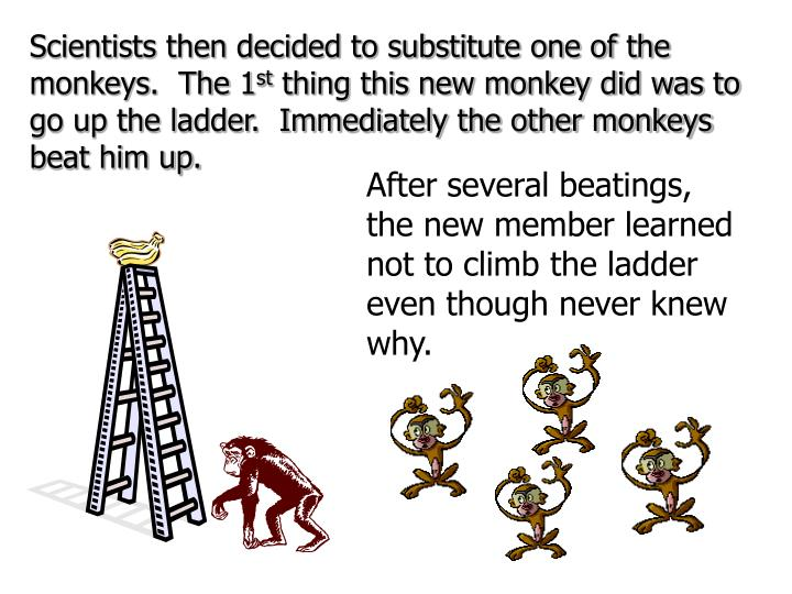 Scientists then decided to substitute one of the monkeys.  The 1