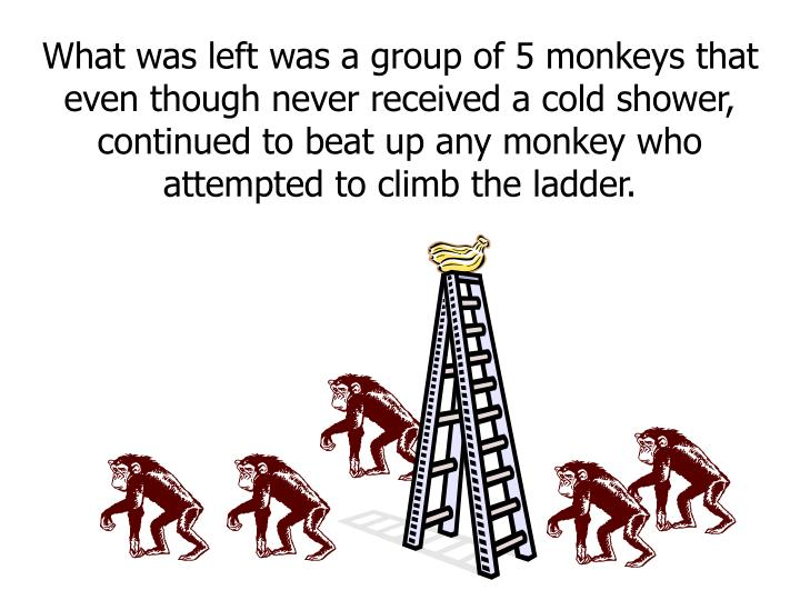 What was left was a group of 5 monkeys that even though never received a cold shower, continued to beat up any monkey who attempted to climb the ladder.