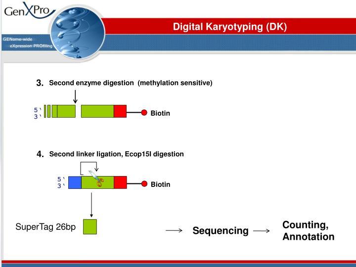 Digital Karyotyping (DK)