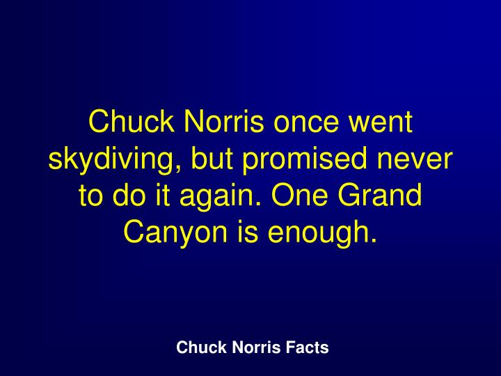 Chuck Norris once went skydiving, but promised never to do it again. One Grand Canyon is enough.
