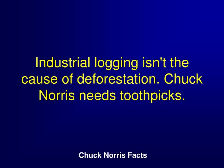 Industrial logging isn't the cause of deforestation. Chuck Norris needs toothpicks.