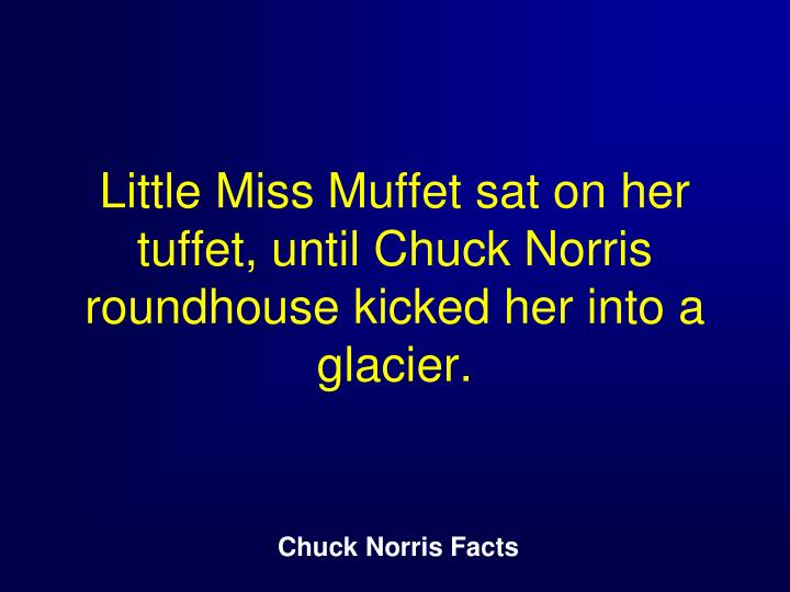 Little Miss Muffet sat on her tuffet, until Chuck Norris roundhouse kicked her into a glacier.