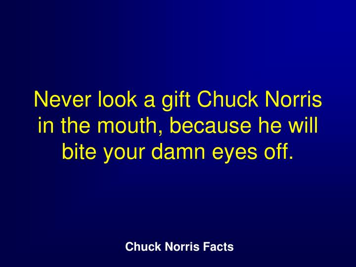 Never look a gift Chuck Norris in the mouth, because he will bite your damn eyes off.