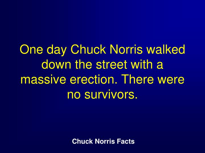 One day Chuck Norris walked down the street with a massive erection. There were no survivors.