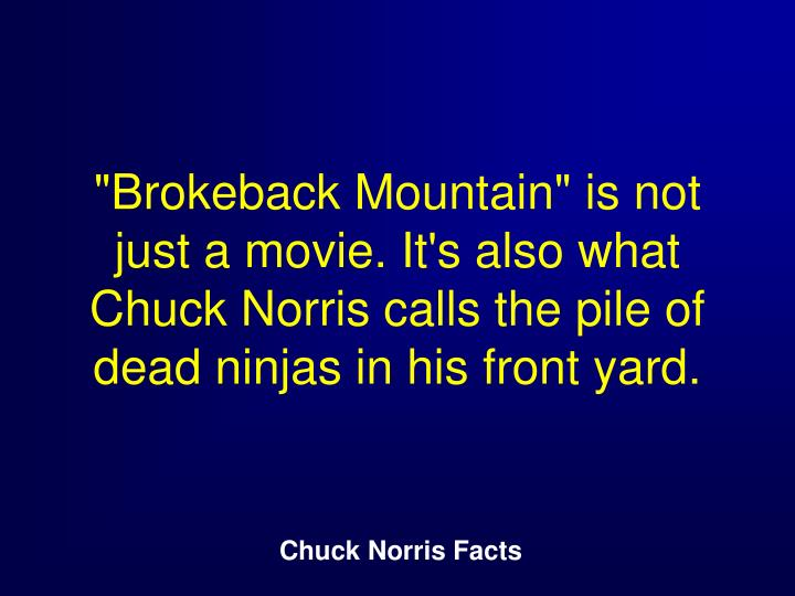 """Brokeback Mountain"" is not just a movie. It's also what Chuck Norris calls the pile of dead ninjas in his front yard."