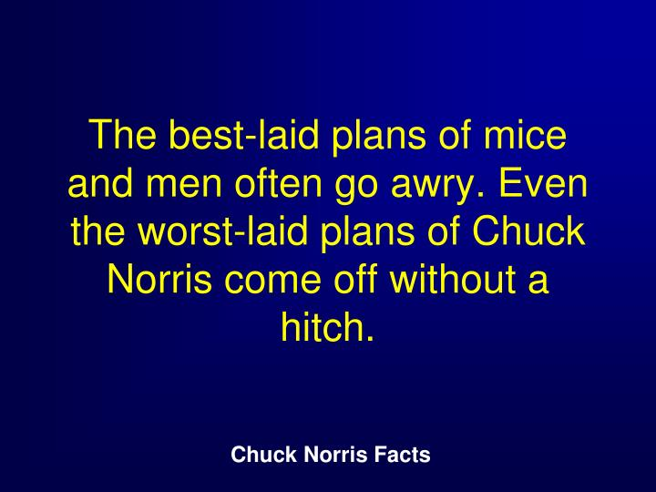 The best-laid plans of mice and men often go awry. Even the worst-laid plans of Chuck Norris come off without a hitch.
