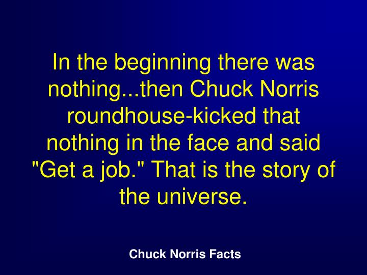 "In the beginning there was nothing...then Chuck Norris roundhouse-kicked that nothing in the face and said ""Get a job."" That is the story of the universe."