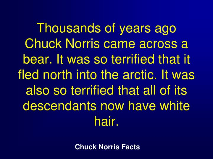 Thousands of years ago Chuck Norris came across a bear. It was so terrified that it fled north into the arctic. It was also so terrified that all of its descendants now have white hair.