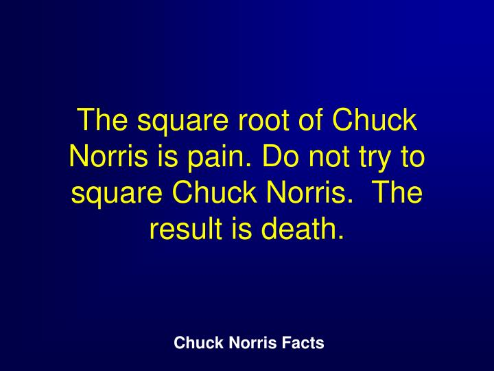 The square root of Chuck Norris is pain. Do not try to square Chuck Norris.  The result is death.