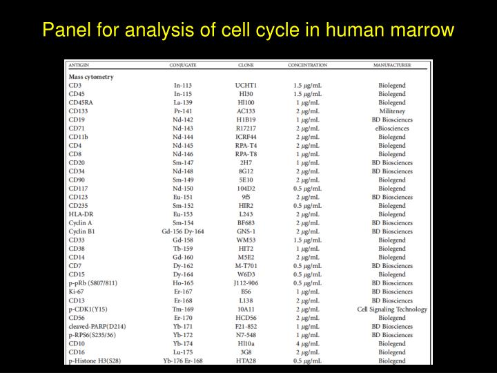 Panel for analysis of cell cycle in human marrow