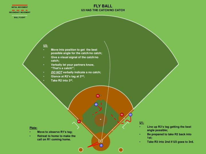 FLY BALL
