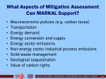 what aspects of mitigation assessment can markal support