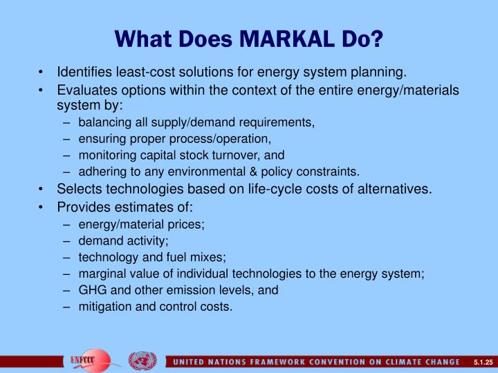 What Does MARKAL Do?