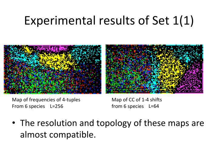 Experimental results of Set 1(1)