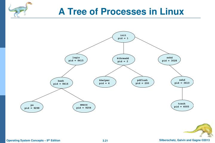 A Tree of Processes in Linux