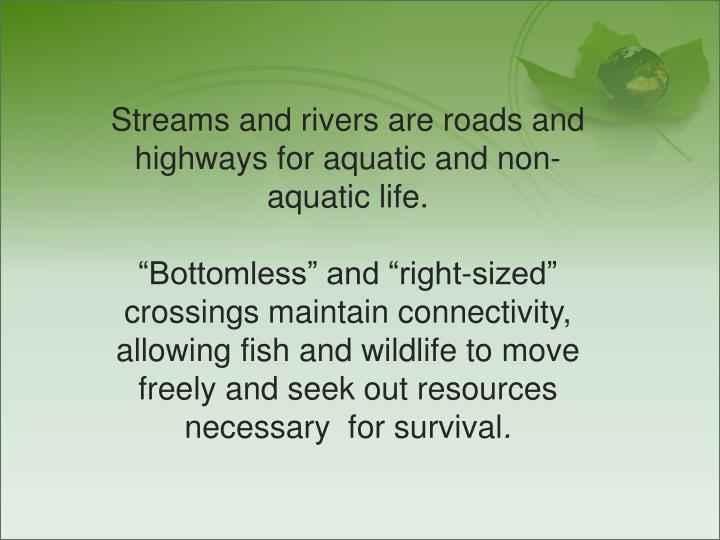 Streams and rivers are roads and highways for aquatic and non-aquatic life.