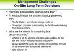 management challenges on site long term decisions