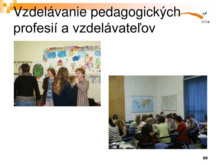Vzdelávanie pedagogických profesií a vzdelávateľov