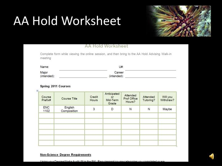 AA Hold Worksheet