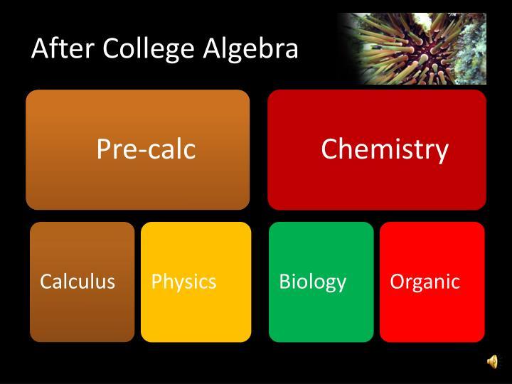 After College Algebra