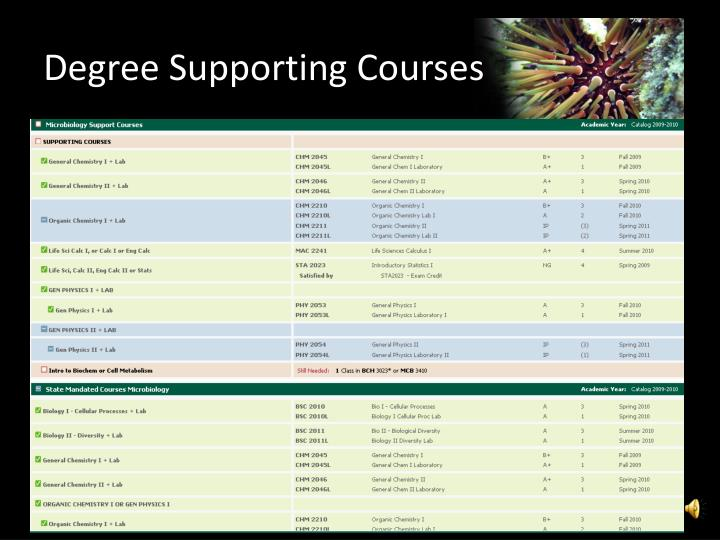 Degree Supporting Courses