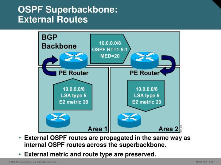 OSPF Superbackbone: