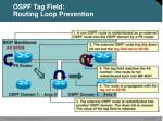 ospf tag field routing loop prevention