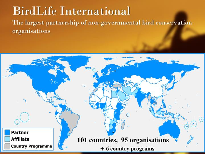 Birdlife international the largest partnership of non governmental bird conservation organisations