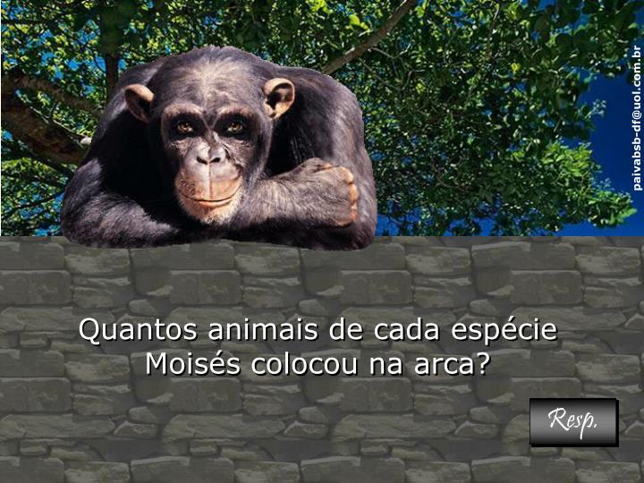 Quantos animais de cada espécie Moisés colocou na arca?