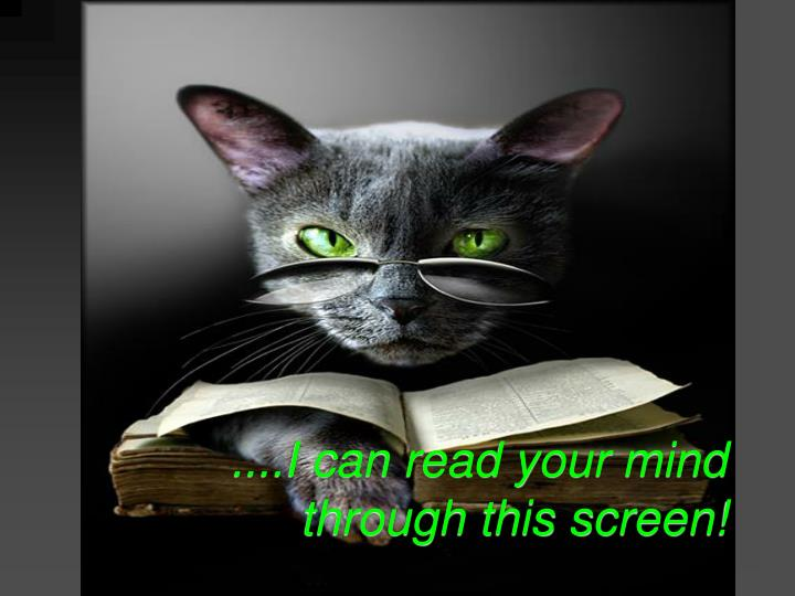 ....I can read your mind through this screen!