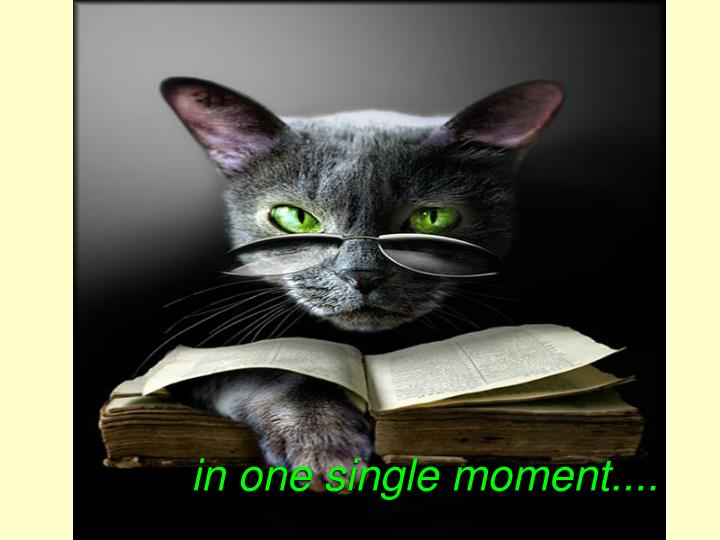 in one single moment....