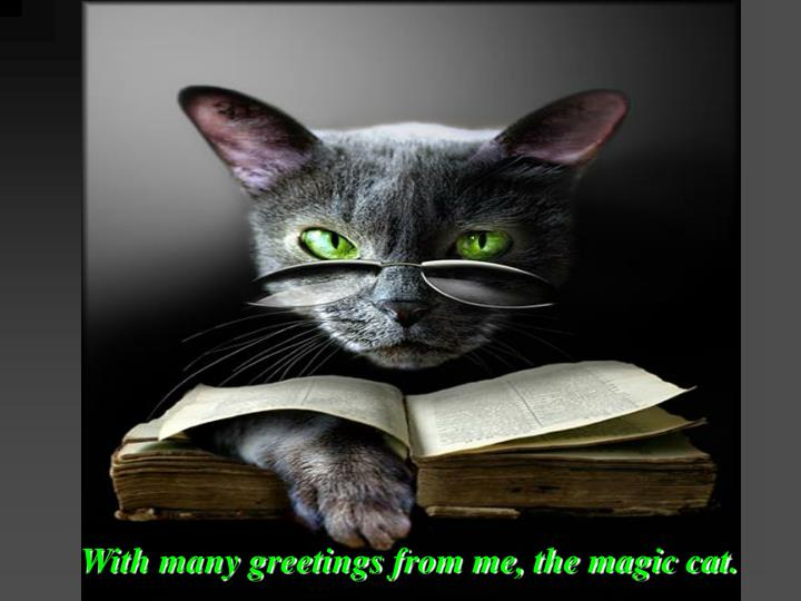 With many greetings from me, the magic cat.